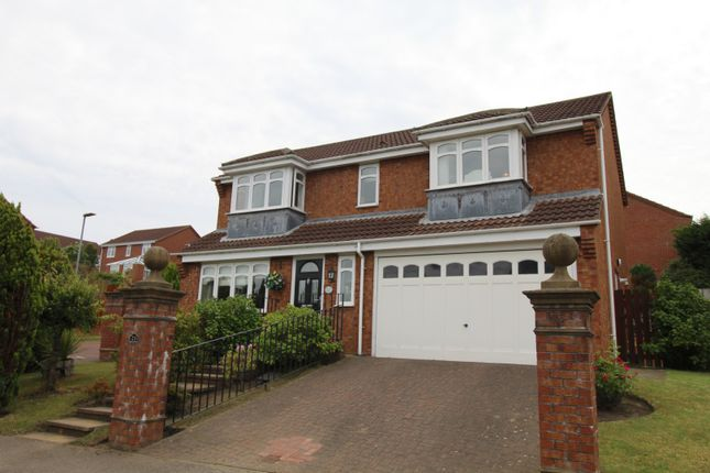 Thumbnail Detached house for sale in Ashfield Park, Newcastle Upon Tyne