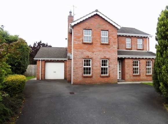 Thumbnail Detached house to rent in Beechfield Lodge, Aghalee, Craigavon
