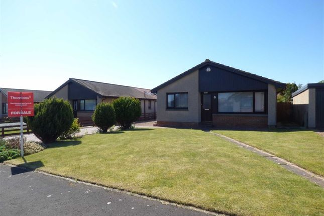 Thumbnail Bungalow for sale in Langhouse Green, Crail, Fife