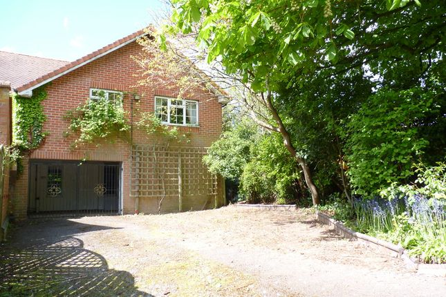 Thumbnail Cottage for sale in The Avenue, Fareham