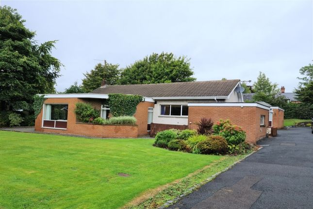 Thumbnail Bungalow for sale in Magheralave Road, Lisburn