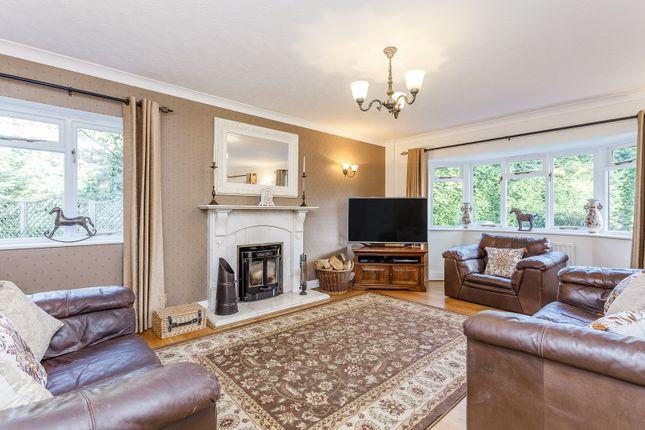 Lounge of The Close, Ifold, Loxwood, Billingshurst RH14