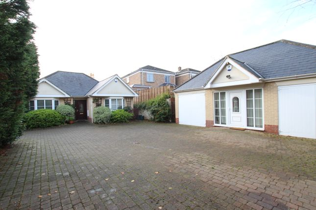 Thumbnail Detached bungalow for sale in Beverley Road, Colchester