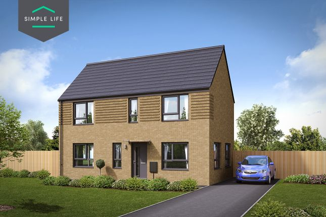 Thumbnail Semi-detached house to rent in Plot 61, 19 Tickhil Drive, Sheffield