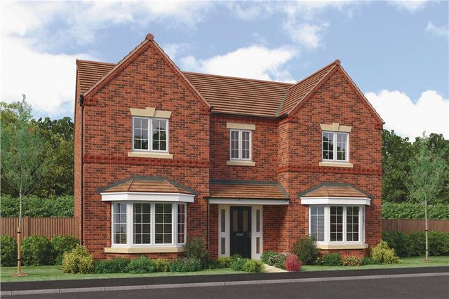 "Thumbnail Detached house for sale in ""Aston"" at Jawbone Lane, Melbourne, Derby"