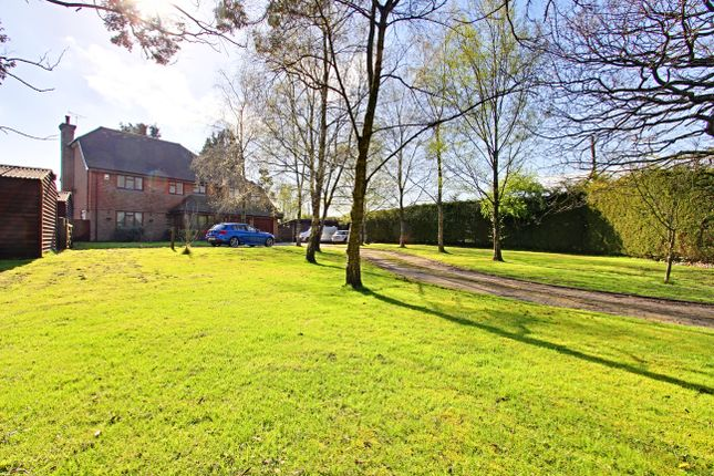 Thumbnail Detached house to rent in Darwell Hill, Netherfield