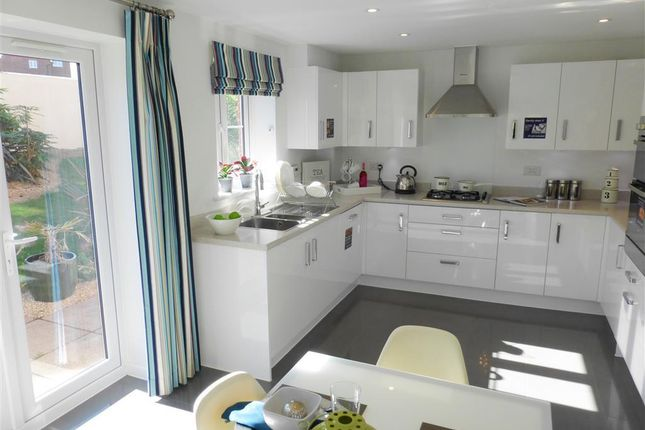Thumbnail Property to rent in Wilkins Drive, Paignton