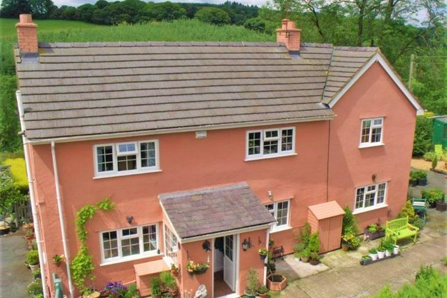 Thumbnail Commercial property for sale in Kennels, Cattery & Equestrian Businesses SY10, Selattyn, Shropshire