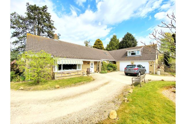 Thumbnail Detached bungalow for sale in Over Compton, Sherborne
