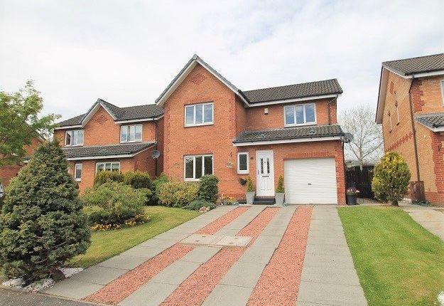 Thumbnail Detached house for sale in Forsyth Court, Lanark