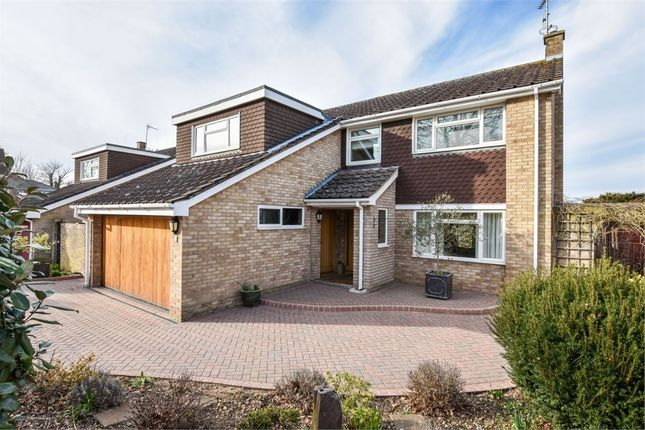 Thumbnail Detached house for sale in Colvin Close, Colchester, Essex