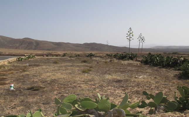 Thumbnail Land for sale in Tindaya, Tindaya, Canary Islands, Spain