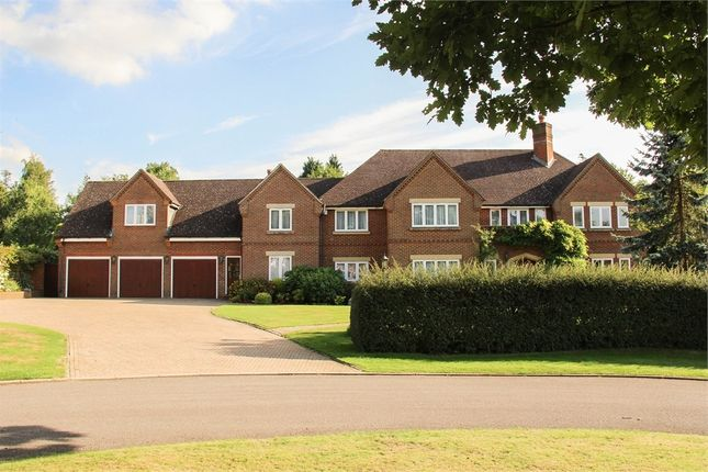 Thumbnail Detached house for sale in Hamilton Place, Kingswood, Tadworth