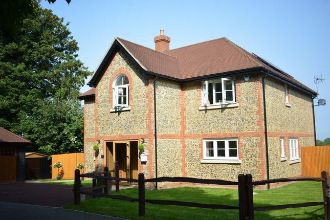 Thumbnail Detached house to rent in Reigate Road, Epsom