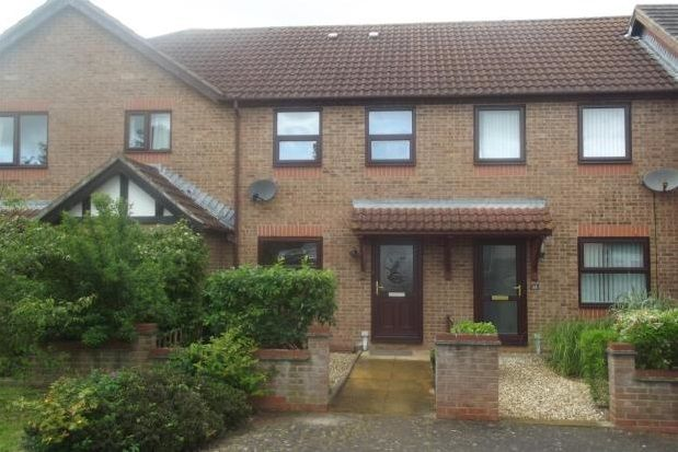 Thumbnail Terraced house to rent in Wilton Way, Exeter