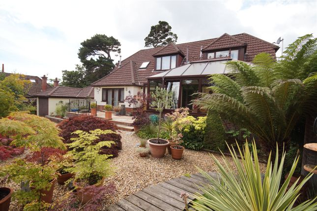 Thumbnail Property for sale in Luscombe Road, Lower Parkstone, Poole, Dorset