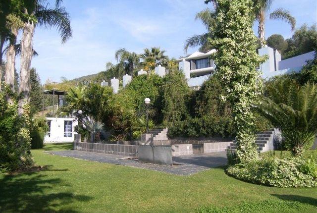 1.1_Villa And Gardens