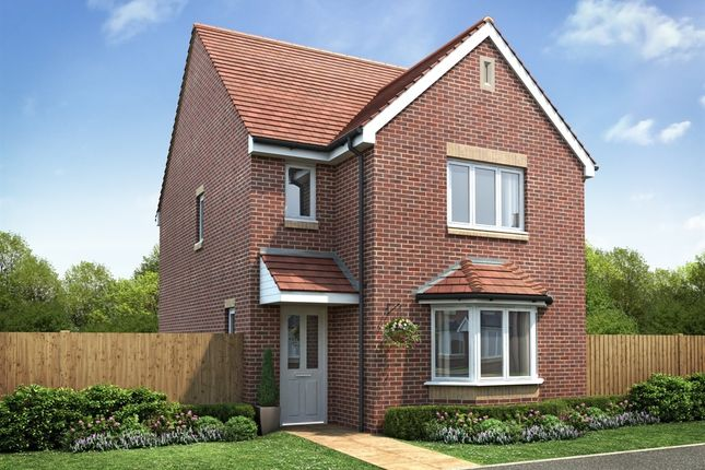 """Thumbnail Detached house for sale in """"The Harrington """" at Lionheart Avenue, Bishops Tachbrook, Leamington Spa"""