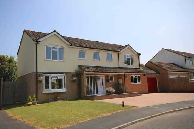 Thumbnail Detached house for sale in Trevithick Close, Frome
