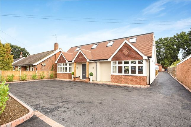 Thumbnail Detached bungalow for sale in Sandhurst Lane, Blackwater, Surrey