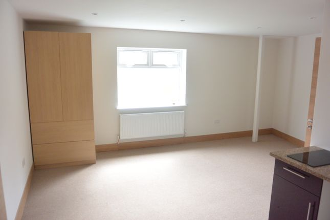Thumbnail Studio to rent in Sunny Gardens Road, London