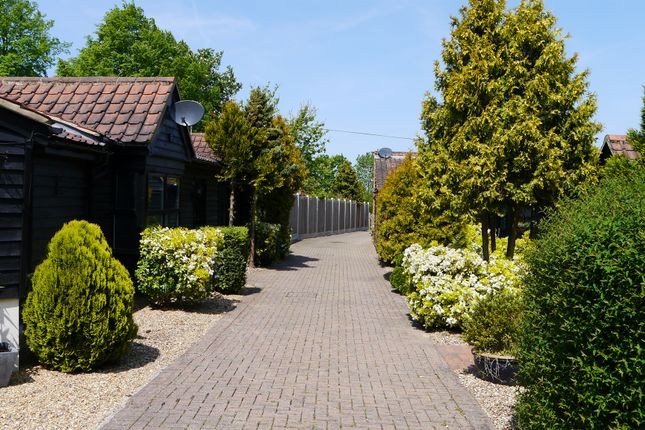 Thumbnail Cottage for sale in Coxtie Green Road, Pilgrims Hatch, Brentwood