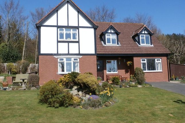 Thumbnail Detached house for sale in Rothbury, Hillside, Redwood