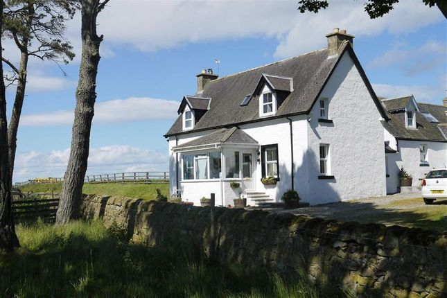 Thumbnail Cottage for sale in Tarrel Farm Cottages, Tain, Ross-Shire