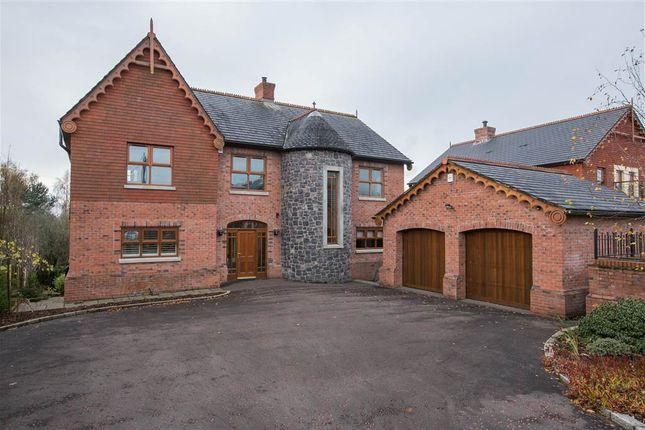 Thumbnail Detached house for sale in 29, Viewfort Park, Belfast