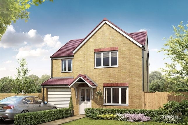 "Thumbnail Detached house for sale in ""The Roseberry"" at Shelton New Road, Hanley, Stoke-On-Trent"