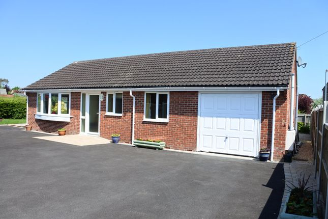 Thumbnail Detached bungalow to rent in Lordsmead Road, Mere, Warminster