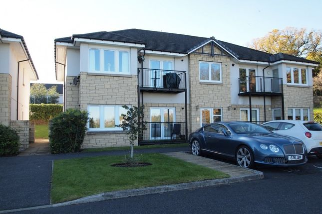 Thumbnail Terraced house to rent in Mote Hill Grove, Hamilton