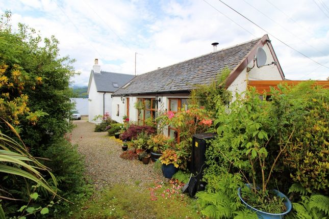 Thumbnail Cottage for sale in Bute Cottage Newton By, Strachur