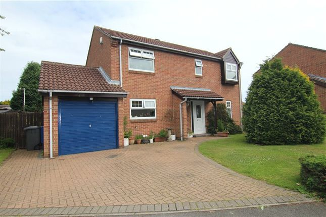 Thumbnail Detached house to rent in Priors Grange, High Pittington, Durham