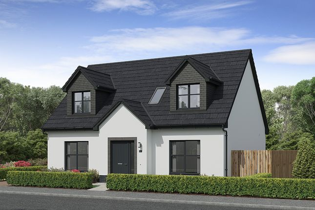 """3 bed detached house for sale in """"Gainford"""" at Carron Den Road, Stonehaven AB39"""
