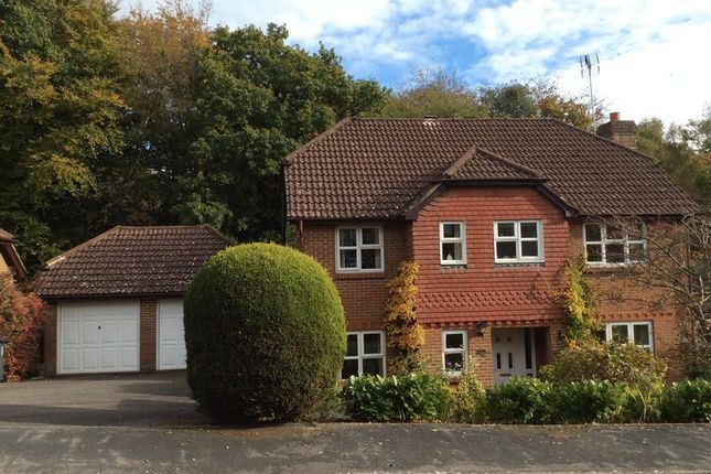 Thumbnail Detached house for sale in Mulberry Way, Heathfield