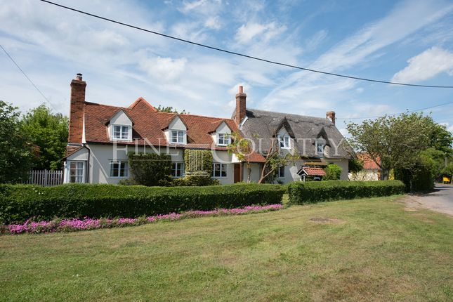 Thumbnail Cottage for sale in Gambles Green, Terling, Chelmsford