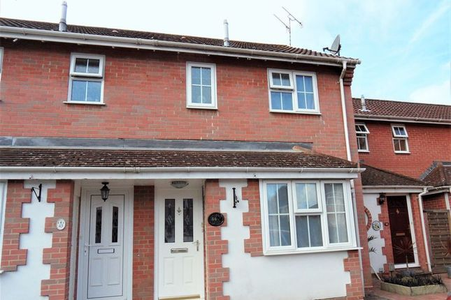 Thumbnail Property for sale in Cypress Avenue, Worthing