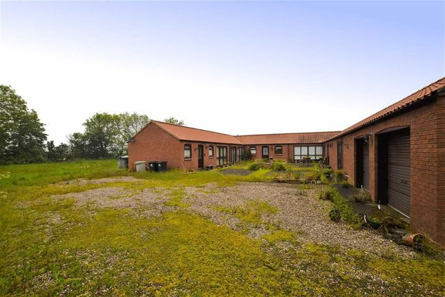 Thumbnail Bungalow for sale in Church Lane, Saltfleetby, Lincolnshire