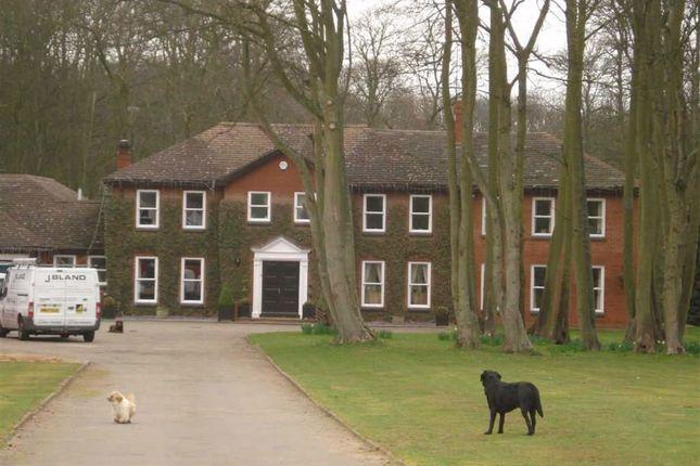 Room to rent in Ecton Lane, Northampton, Northamptonshire NN6