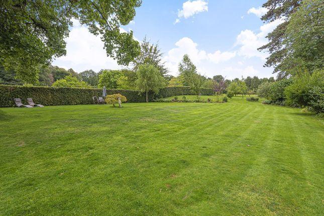 Garden of The Hollow, Washington, West Sussex RH20