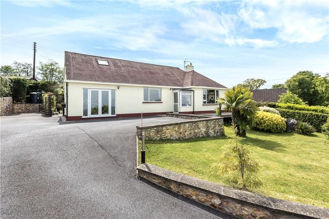 Thumbnail Detached bungalow for sale in Crewkerne Road, Axminster, Devon