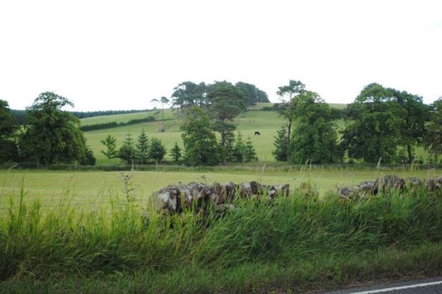Thumbnail Land for sale in 2 Plots, Westhill Lane, Whitecastle, By Biggar