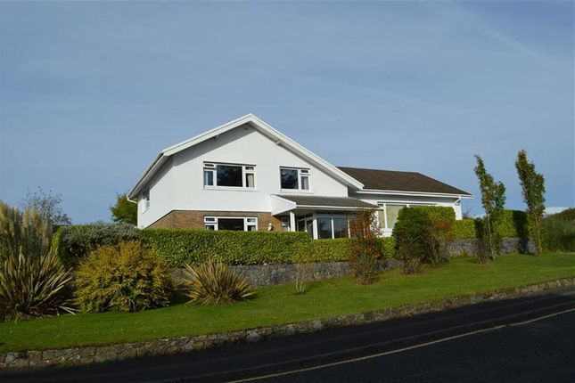 Thumbnail Detached house for sale in The Bryn, Swansea