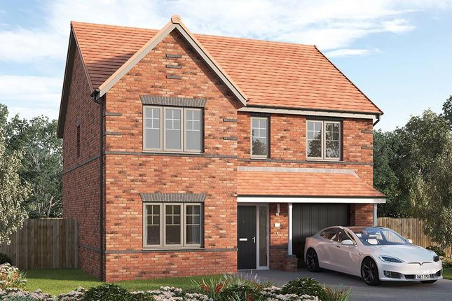 """Thumbnail Detached house for sale in """"The Tambrook"""" at Acorn Drive, Camperdown, Newcastle Upon Tyne"""