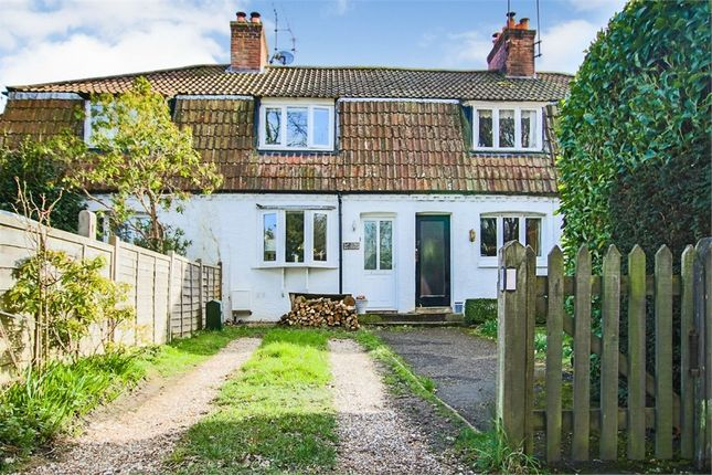 Thumbnail Terraced house for sale in Cat Street, Upper Hartfield, Hartfield, East Sussex