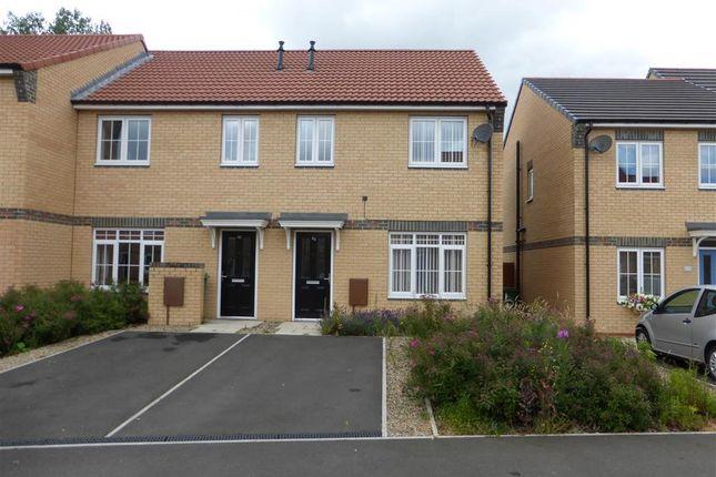 Thumbnail Semi-detached house to rent in Verbena Drive, Billingham