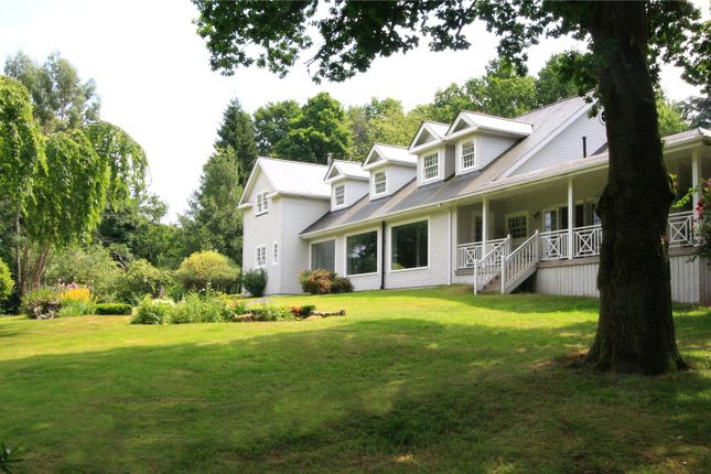 Thumbnail Detached house for sale in Hatch Lane, Haslemere, Surrey