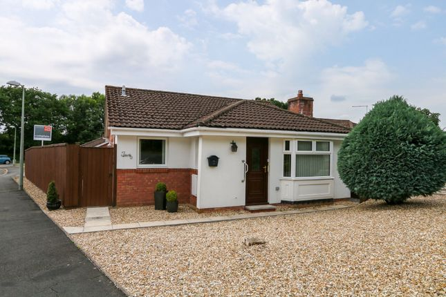Thumbnail Detached bungalow for sale in Newbury Drive, Bovey Tracey, Newton Abbot
