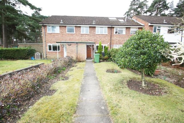 Thumbnail Terraced house to rent in Rothbury Walk, Camberley